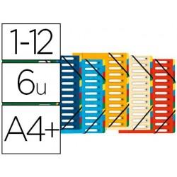 Trieur exacompta harmonika carte lustrée 5.5/10e a4+ 12...