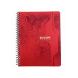 Cahier double spirale 5x5 17x22 100p