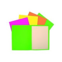 Chemise 170g 24x32 fluo assorti (x100)