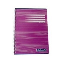 Cahier Calligraphe 70g A4 180 page 5x5