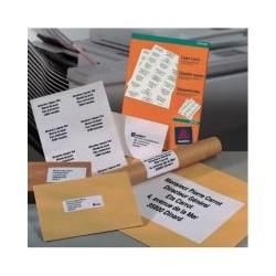 100 planche 1 étiqu DCP001 210x297 (100)