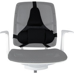 Support dorsal ergonomique Fellowes