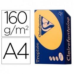 Papier clairefontaine multifonction couleur trophe a4...