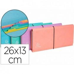 Trieur exacompta pocket 6 compartiments carte lustree...