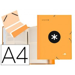 Trieur liderpapel antartik carton rembordé a4+12...