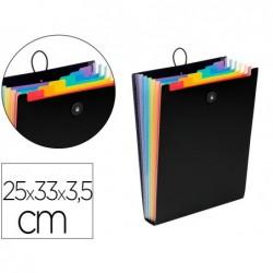 Trieur viquel rainbow class polypropylene 7/10e 250x330mm...